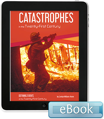 Catastrophes in the Twenty-First Century - eBook