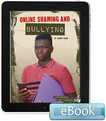 Online Shaming and Bullying - eBook