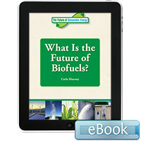 The Future of Renewable Energy: The Future of Renewable Energy: What is the Future of Biofuels?