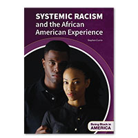 Systemic Racism and the African American Experience